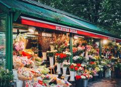 花店名字大全好听花店2021 独一无二的花店名字 吸引人的鲜花店名字